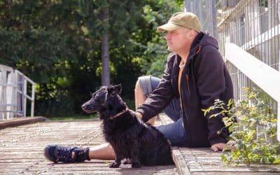Choisir un éducateur canin pour son chien : pourquoi le faire ?